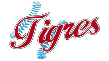 logo_tig_costuras